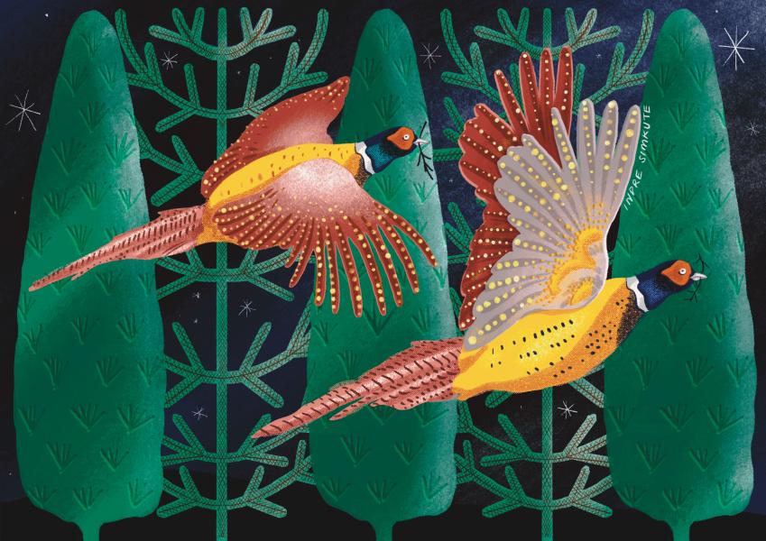 Night Pheasants
