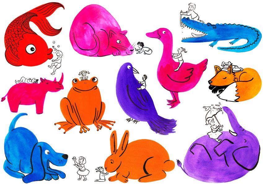 colour animals