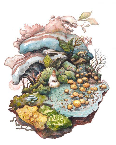 Funghi Nook