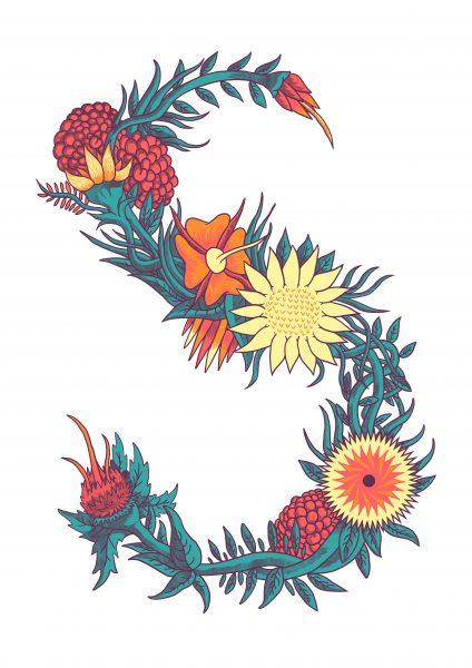 S Of Flowers