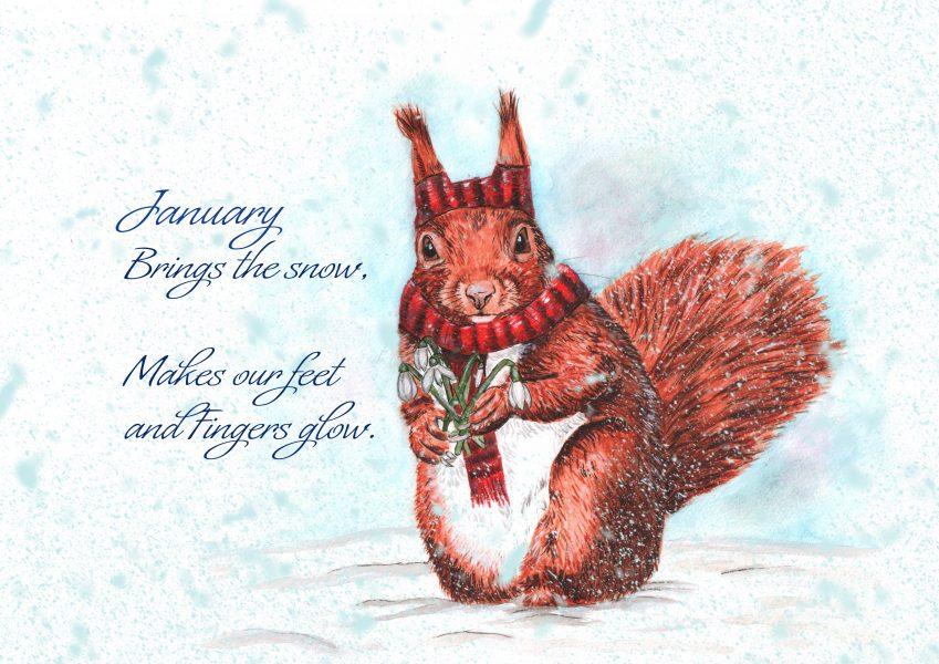 January brings the Snow Jan