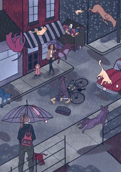 Raining Cats and Dogs Page 7