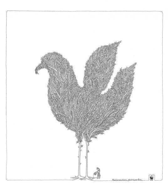 Bird Shailesh Khandeparkar