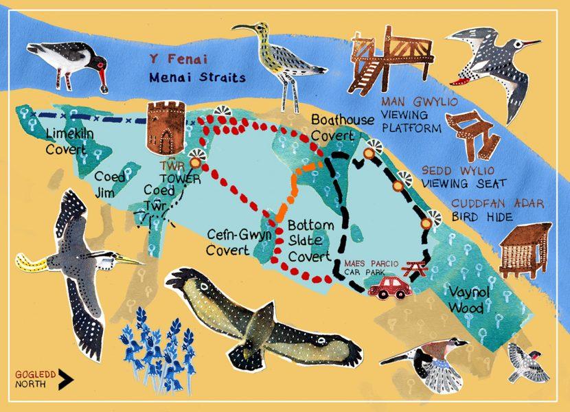Decorative map for leaflet (NT)