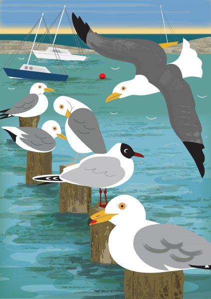 Cover Illustration, Coastal Birds