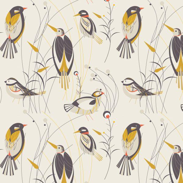 50's Birds