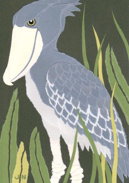 African Shoebill