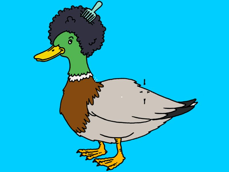 Afro Duck
