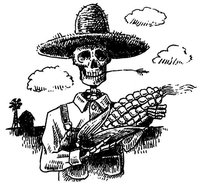 Agent Orange Corn