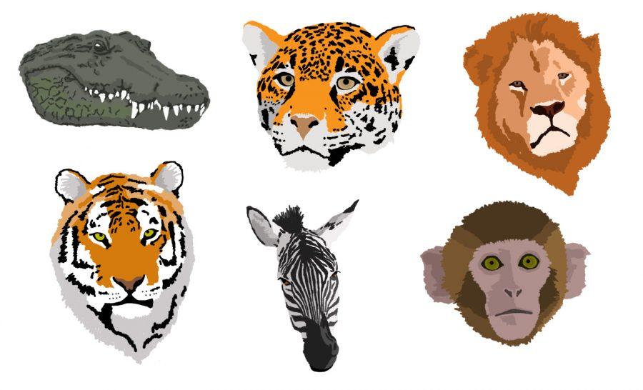 Animal Icons