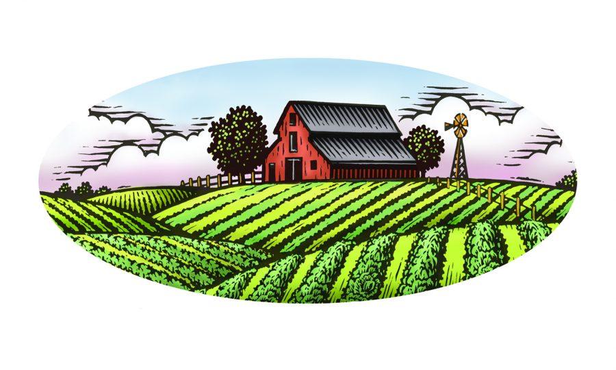 Apio Farm Scen