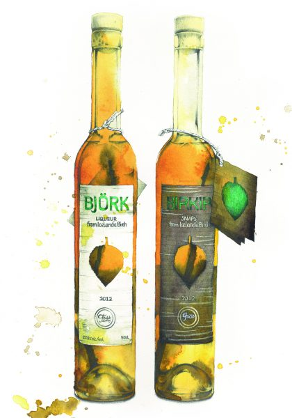Bjork and Birkir