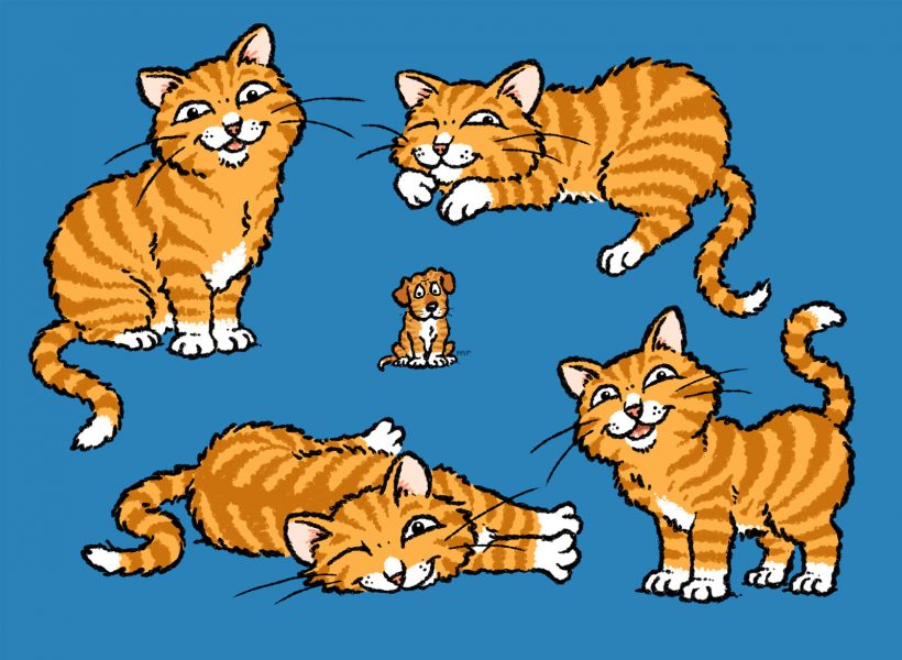 'Cadwaladr' cat character for CADW