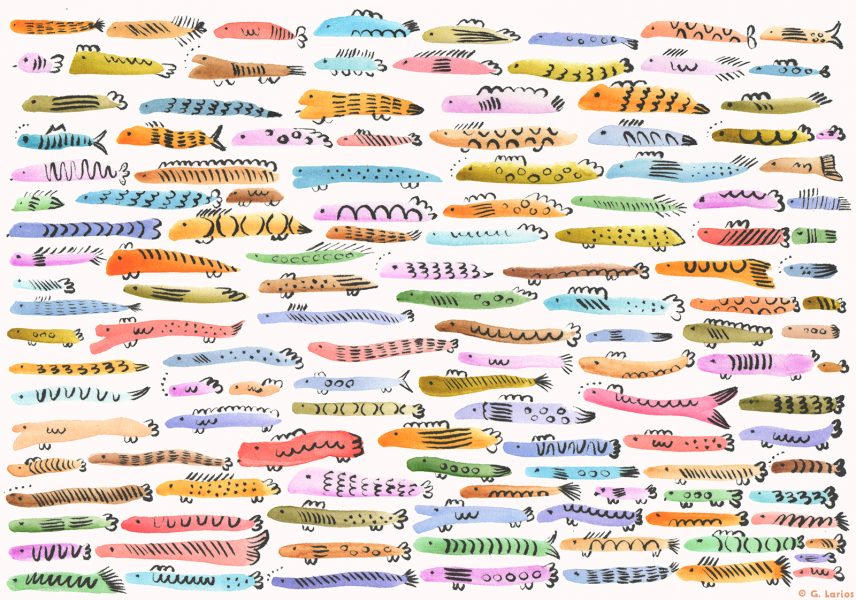Colourful Fishes