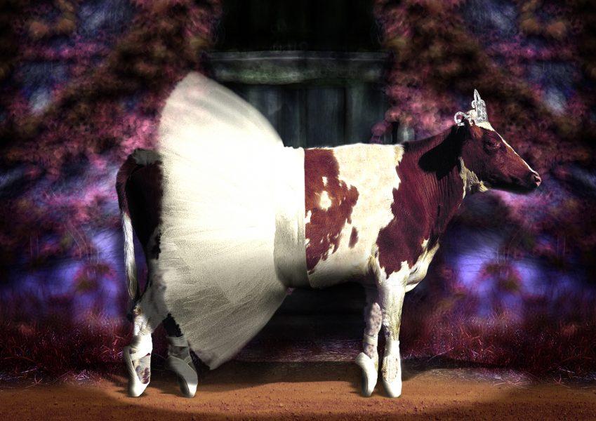 Cow Planet: Ballerina Cow