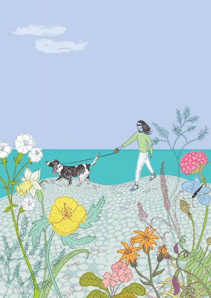 Dog walking in Summer at the Beach