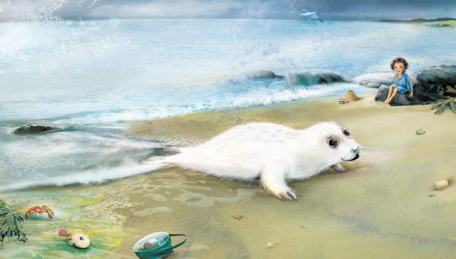 Dreamer: the seal