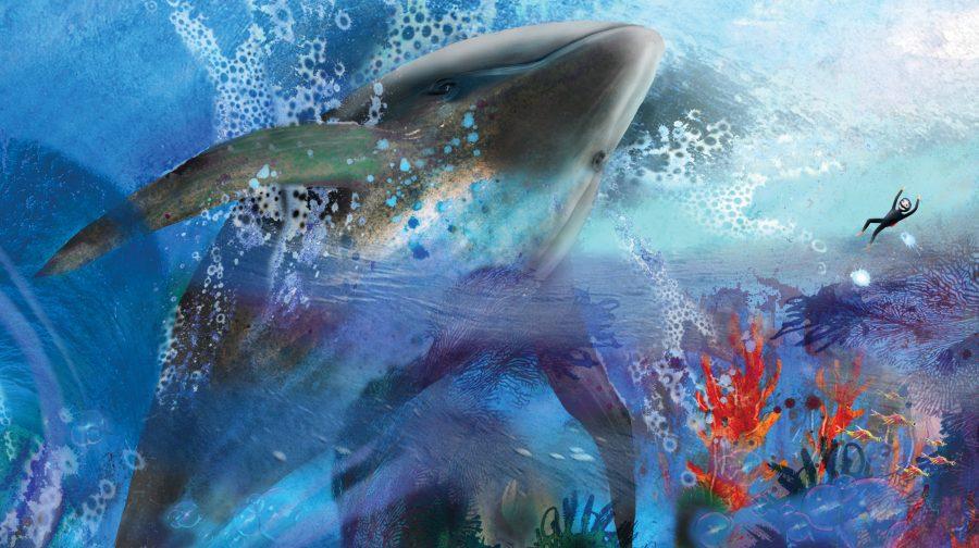 Dreamer: the whale