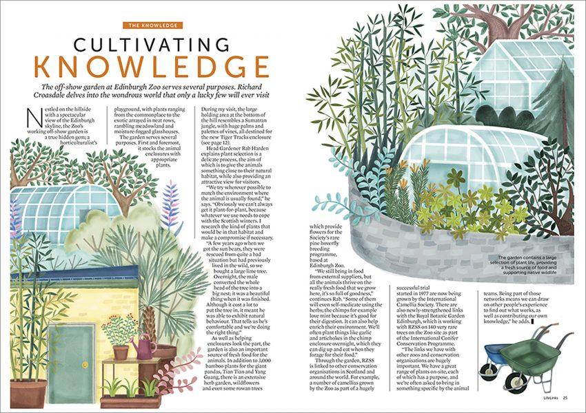 Edinburgh Zoo Magazine Editorial Illustration