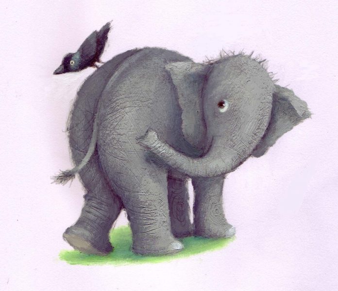 Elephant and jackdaw
