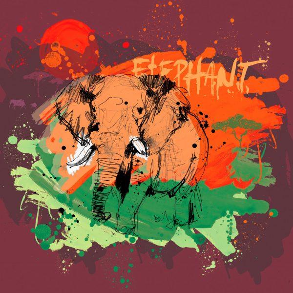Elephant Animal Study