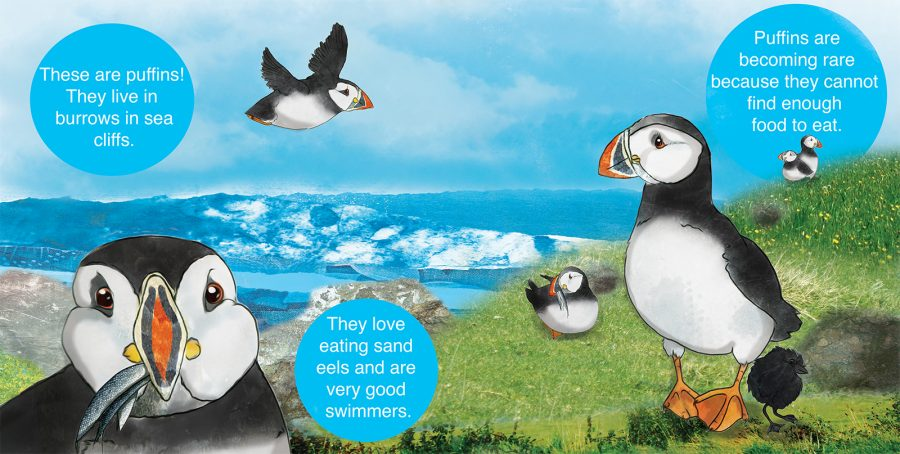 Engendered Animals Picture Book Puffin Page