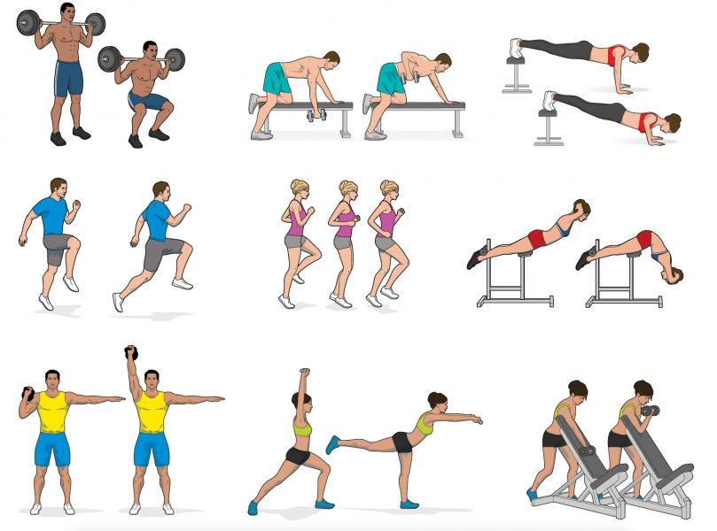 Fitness Exercises 2016