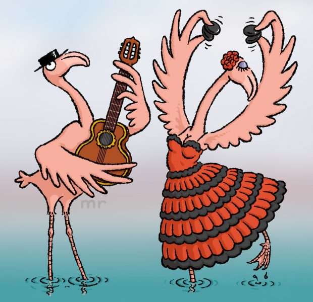 Flamingo Flamenco (Flaminco) - personal work
