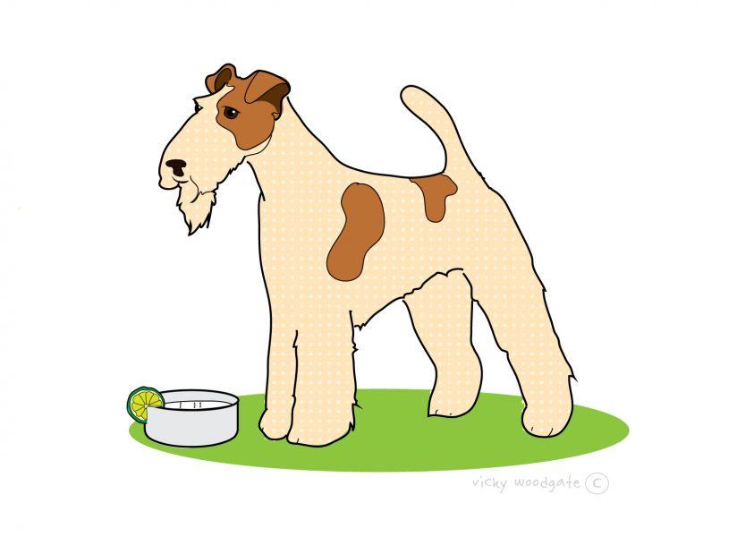 fox terrier - pub dog