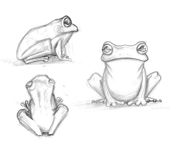 Frog (Character development for sculptor)