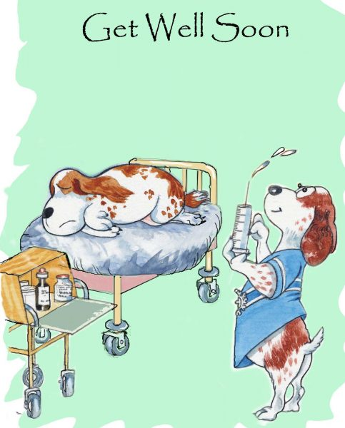 Get Well Dog Card