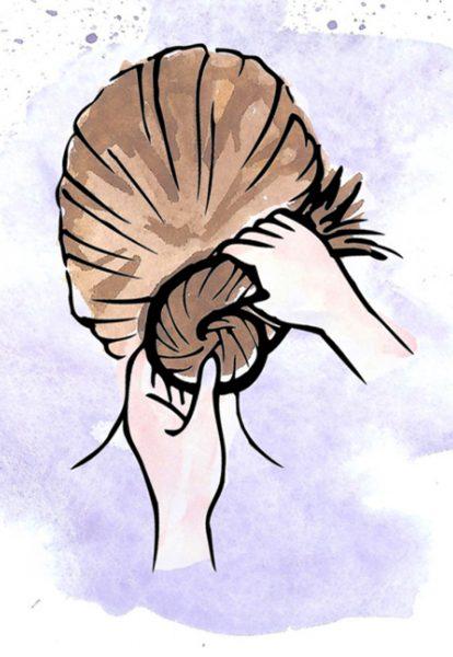 Hair Instruction
