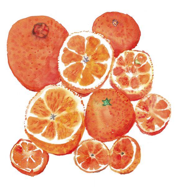 Jamie Oliver, Oranges