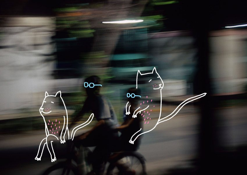 Kenzo Bikes