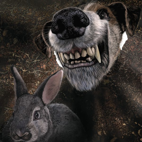 Let the Dog see the Rabbit