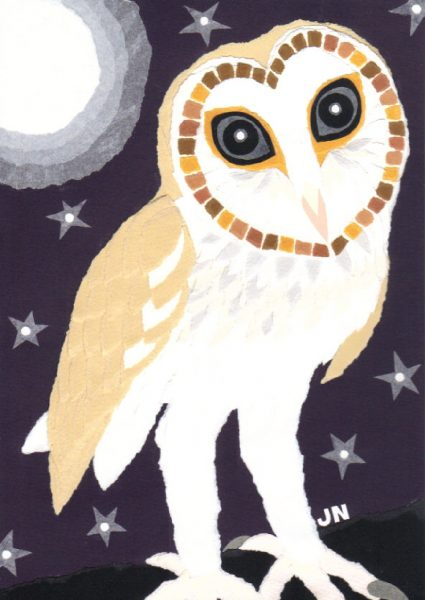 Little Barn Owl