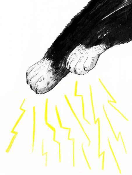 Magic Paws