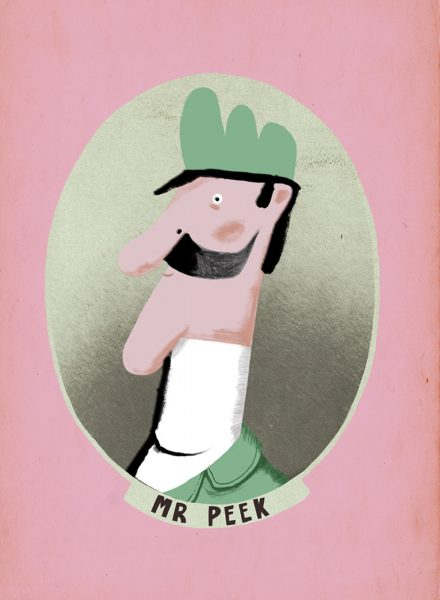 Mr Peek Insert