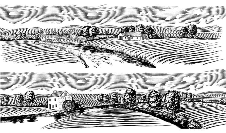 Odlum's Landscapes