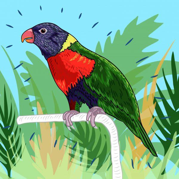 Parakeet in Paradise