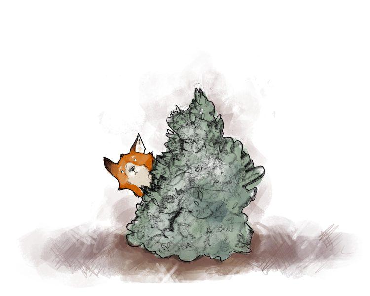 Peek a'Fox