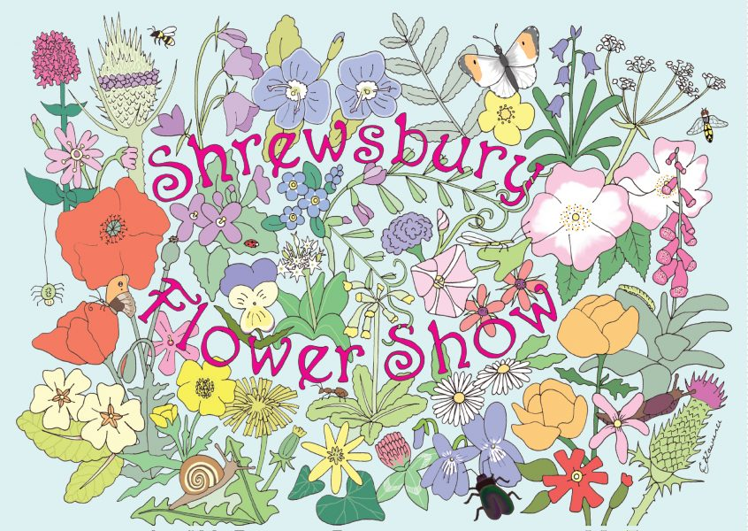 Shrewsbury Flower Show postcard