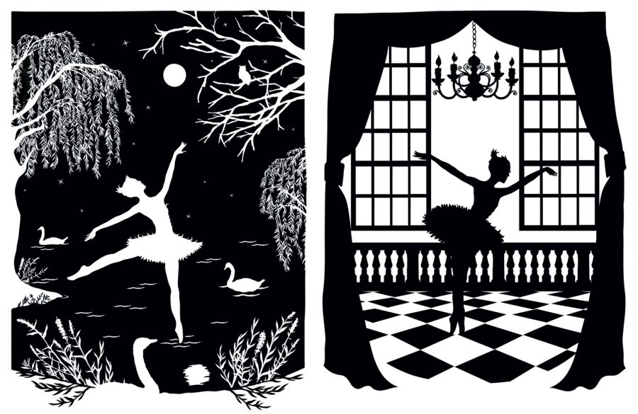 Swan Lake; the white swan and the black swan