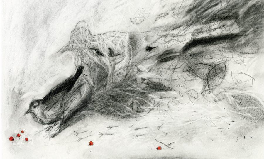 The Bird's Ancestors