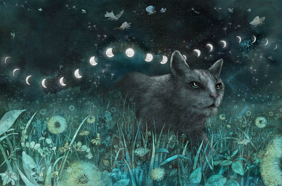 The Cat and The Moon, from The Moon Spun Round: W. B. Yeats for Children