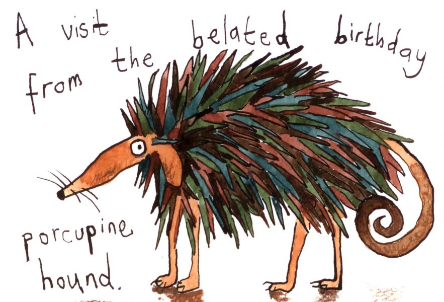 The Porcupine Hound