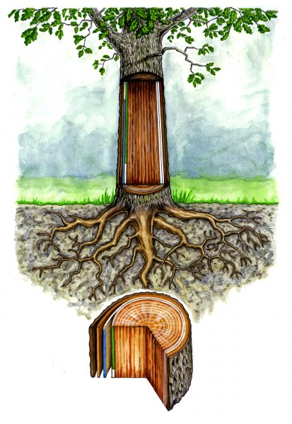 Tree trail educational cross section