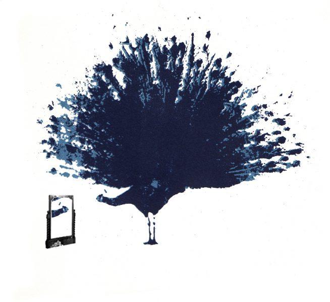 Vain Peacock